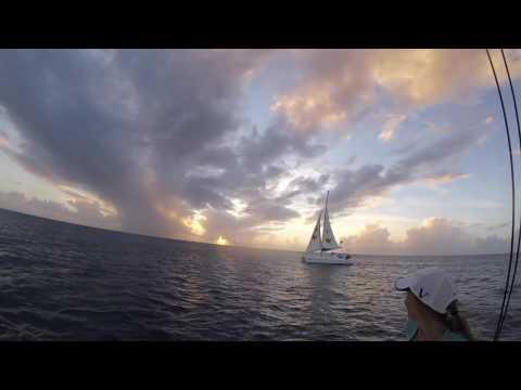Curtos in Barbados 2K16