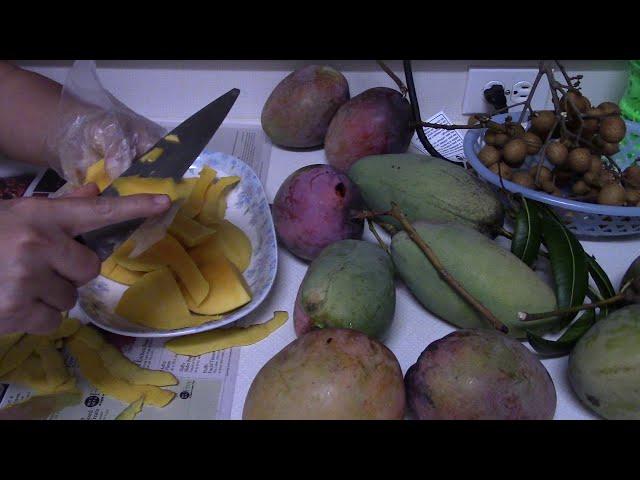 Làm Xoài Sấy Tại Nhà Ở Mỹ P1 Dried Mango | NVTC2 MVI 2322 | Trái Cây Sấy | Hoa Quả Sấy
