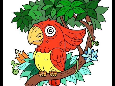 Download 880+  Gambar Burung Hantu Diatas Pohon HD  Free