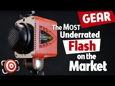DigiBee DB800 By Paul C. Buff - The MOST Underrated Flash Unit On The Market For Studio Lighting