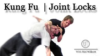 Learn Choy Li Fut Kung Fu | Joint locks