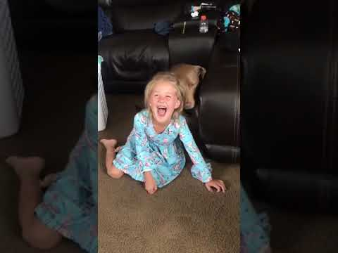 The Dave Ryan Show - Watch Dad Surprise Daughter With Her Favorite Band: The Jonas Brother