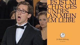 J.S. Bach - Cantata BWV 25 - Es ist nichts Gesundes 2 Recitative (J. S. Bach Foundation)