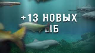 Let's Fish - Parana RU