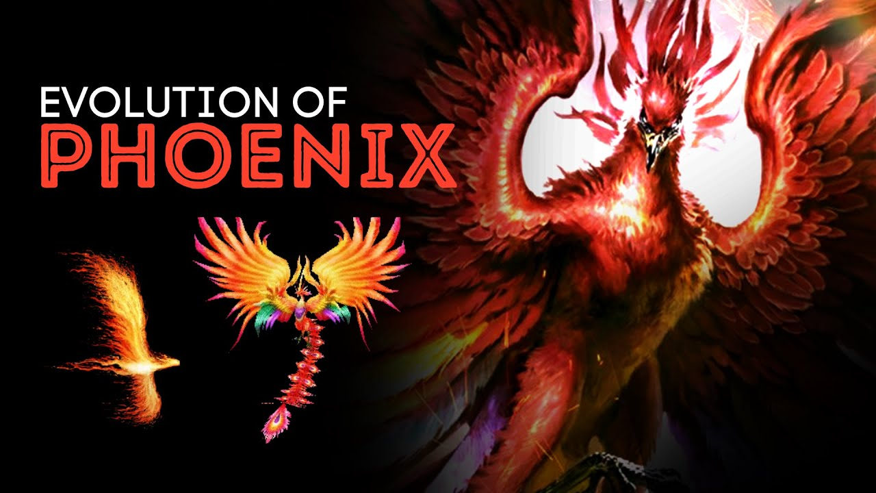 The Complete Evolution of Phoenix