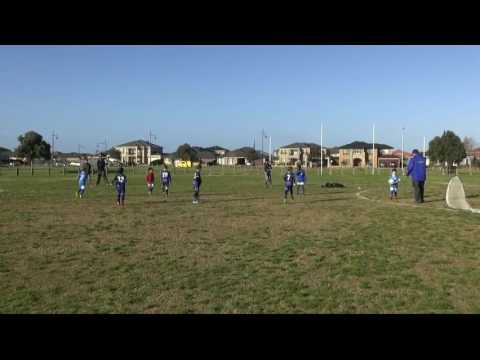 Point Cook Jets Raptors U/7s  Balmoral VS Point Cook 31/7/2016