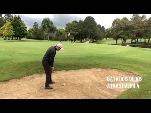 Golfe - SAIA