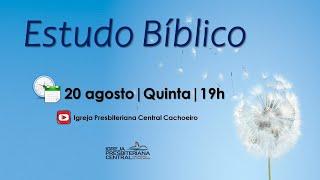 """Estudo Bíblico: """"Dimensões da Missão na Igreja"""" - 20 de agosto de 2020"""