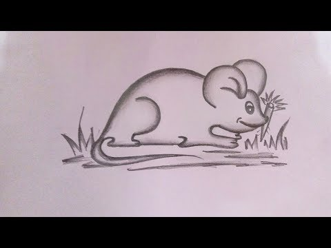 how-to-draw-a-mouse-step-by-step-||-pencil-drawing