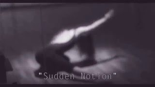"""Sudden Notion""   No Hero 