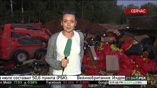 видео ульяновский совхоз декоративного садоводства