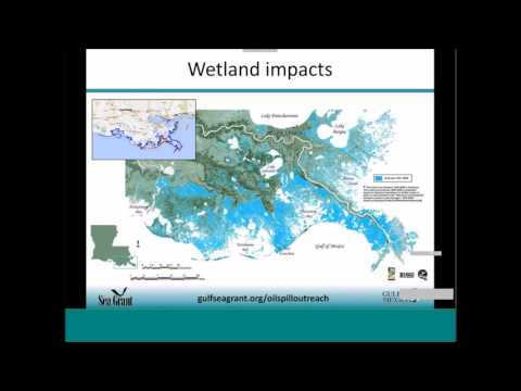Sharing Gulf Science Discoveries for Management
