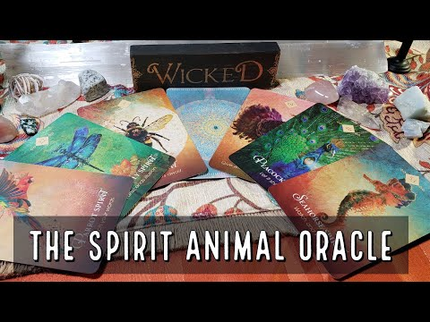 the-spirit-animal-oracle-review