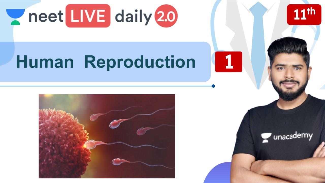 NEET: Human  Reproduction | L1 | Biology l Unacademy NEET | Ashish Parashar
