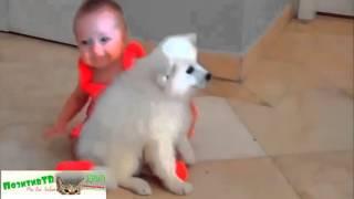 ЩЕНКИ и ДЕТИ играют ВМЕСТЕ! Дети и животные очень смешно!