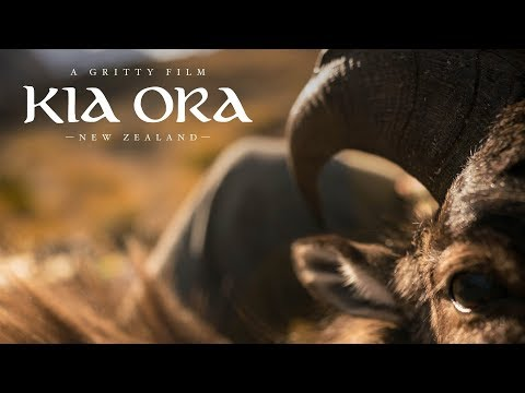 BOWHUNTING HIMALAYAN TAHR // GRITTY FILM // KIA ORA