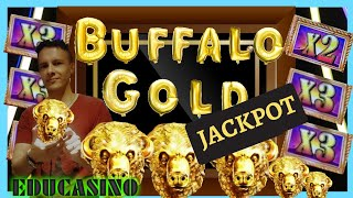 📽️🚨JACKPOT🚨 BUFFALO GOLD COLLECTION🐃CRAZY GOLD HEADS🐃 💲GAME RULES & ALL PAYS