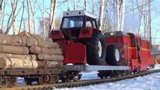 ťažba dreva Zrywka drewna Lxd2 & Zetor