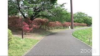 長峰公園のつつじオンライン飲み会
