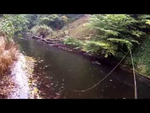 The River Esk - (5-10-15) Grayling