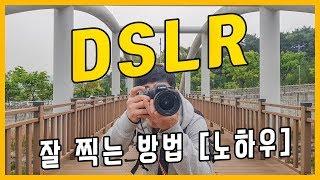 DSLR카메라 사진 잘 찍는방법 9년간 습득한 노하우 …