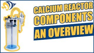Calcium Reactor Components - An Overview