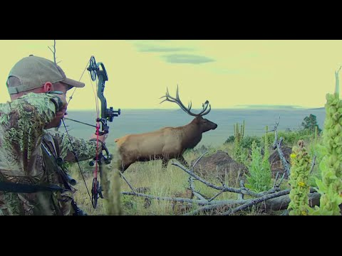 Calling New Mexico Elk in the Rut