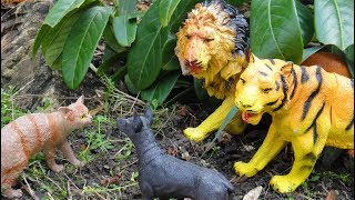 ЧТО ЗА НЕВИДАННЫЙ ЗВЕРЬ?!!! Переполох в лесу. Тигры, львы, медведи и др. животные для детей