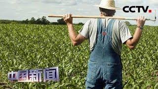 [中国新闻] 中国相关企业暂停新的美国农产品采购 | CCTV中文国际