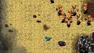 WarBreeds - gameplay