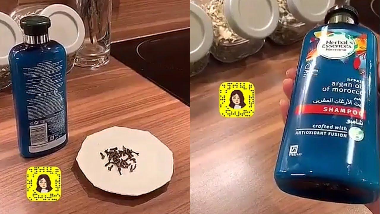 إعادة بشكل اوضح لوصفة المسمار القرنفل مع الشامبو لحل مشاكل الشعر والرد على الاستفسارات رحاب Youtube