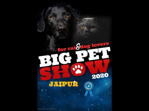 The Biggest International Dog Show of Rajasthan  #jaipur #dogbazar
