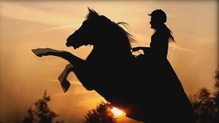 Horses - Кони ветров