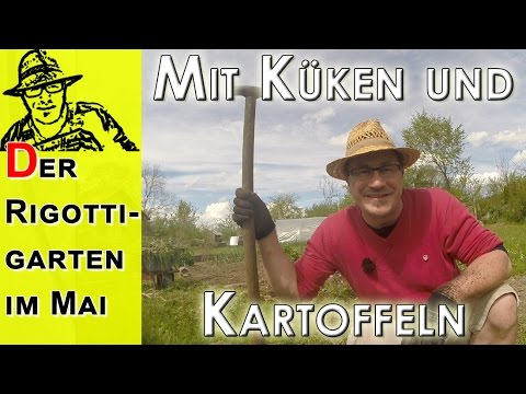 Gartenarbeiten im mai kartoffeln legen k ken pflegen youtube - Gartenarbeiten im mai ...