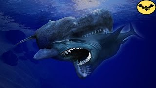 The Megalodon, top 5 greatest rivals.