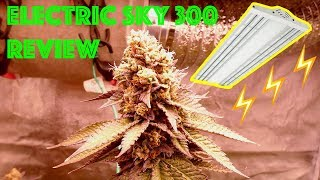 Week by Week Grow Review of the Electric Sky 300w LED by The Green Sunshine Company