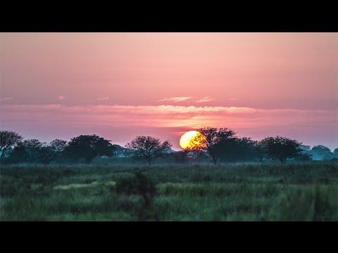 Energy Academy Europe verzorgt onderwijs in Mozambique