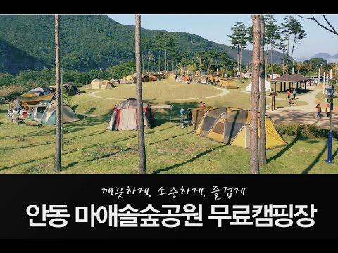 안동 무료캠핑장 - 마애솔숲공원 캠핑장