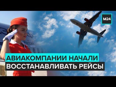 Российские авиакомпании начали восстанавливать рейсы - Москва 24