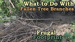 What to Do With Fallen Tree Branches - Time-lapse Brush Pile Cleanup