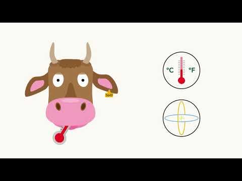 NTAG SmartSensor For Animal Tagging