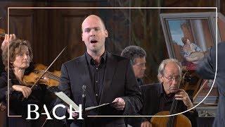 Bach - Cantata Geist und Seele wird verwirret BWV 35 - Van Veldhoven | Netherlands Bach Society