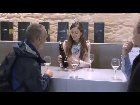 Galicia Rias Baixas Exclusive wine tour of Bodega Pazo Baion