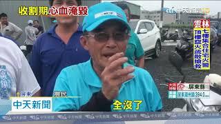 20200523中天新聞 怒! 控施工害稻田淹大水 東港農民抗議