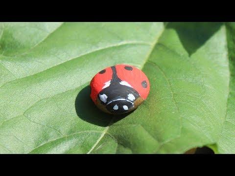 Joaninha - pintura em pedra decoração mini jardim / Lady Bug rock painting
