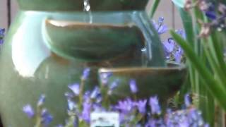 Hummingbird Bath Fountain March 12, 2015 8:00 Am Escondido, Ca