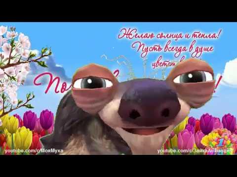 ZOOBE зайка  Прикольное Поздравление с 1 Мая Заговор на Хороший Урожай - Лучшие видео поздравления в ютубе (в высоком качестве)!