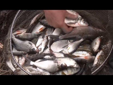 Все про рыбалку и ловлю рыбы