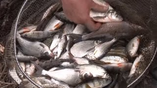 Ранняя весна. Первая фидерная рыбалка по открытой воде.