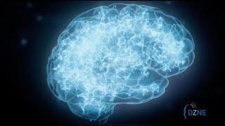 Über das Deutsche Zentrum für Neurodegenerative Erkrankungen e.V. (DZNE)